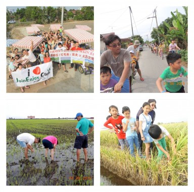 Cycling & Experience paddy field activities  with your family (whatsapp us for more details)